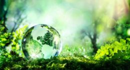 Mes engagements et actions pour la Planète
