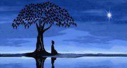 Méditation-MBSR  avec Eugenio Correnti